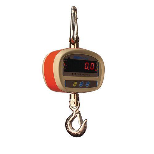 LED Crane weighers - Light duty crane weighers