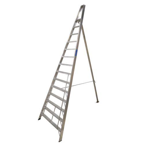 Groundsman ladder